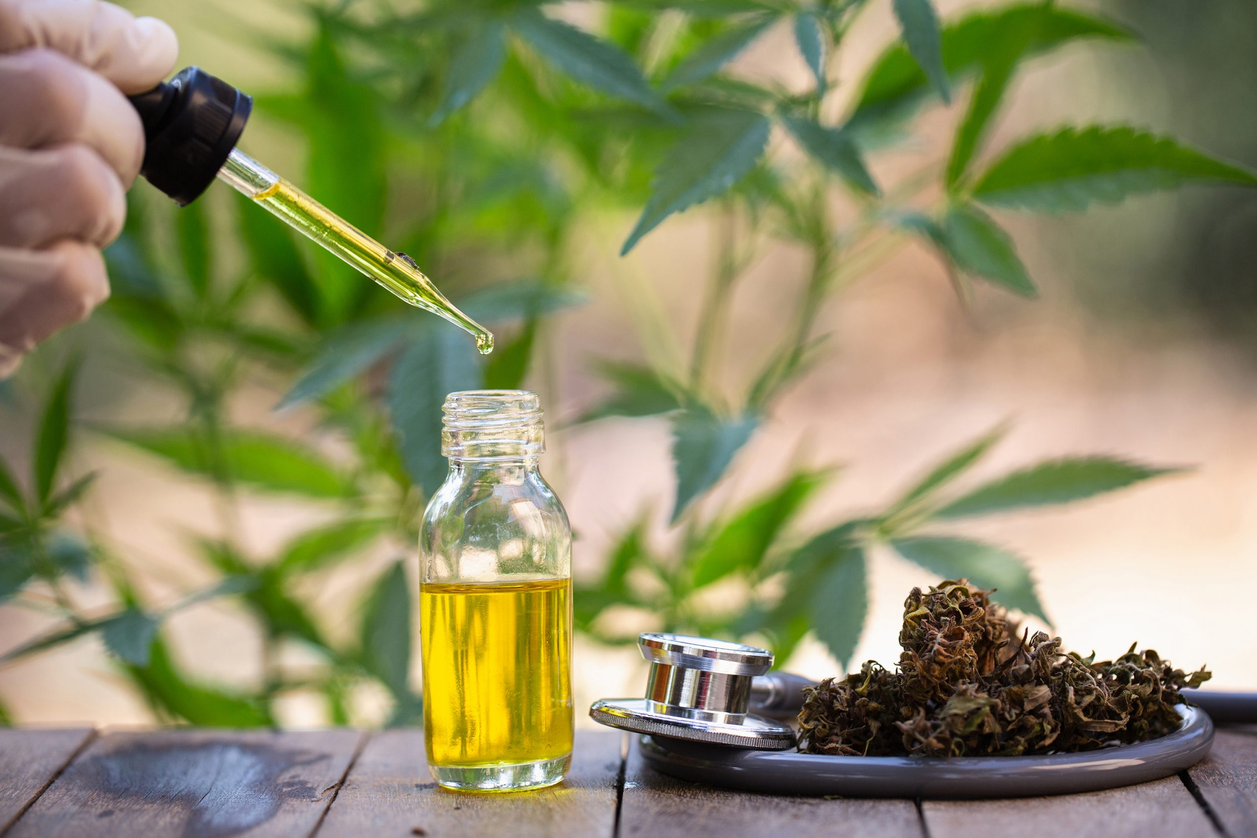 Types regarding   CBD Products as well as The best way to Make use of them