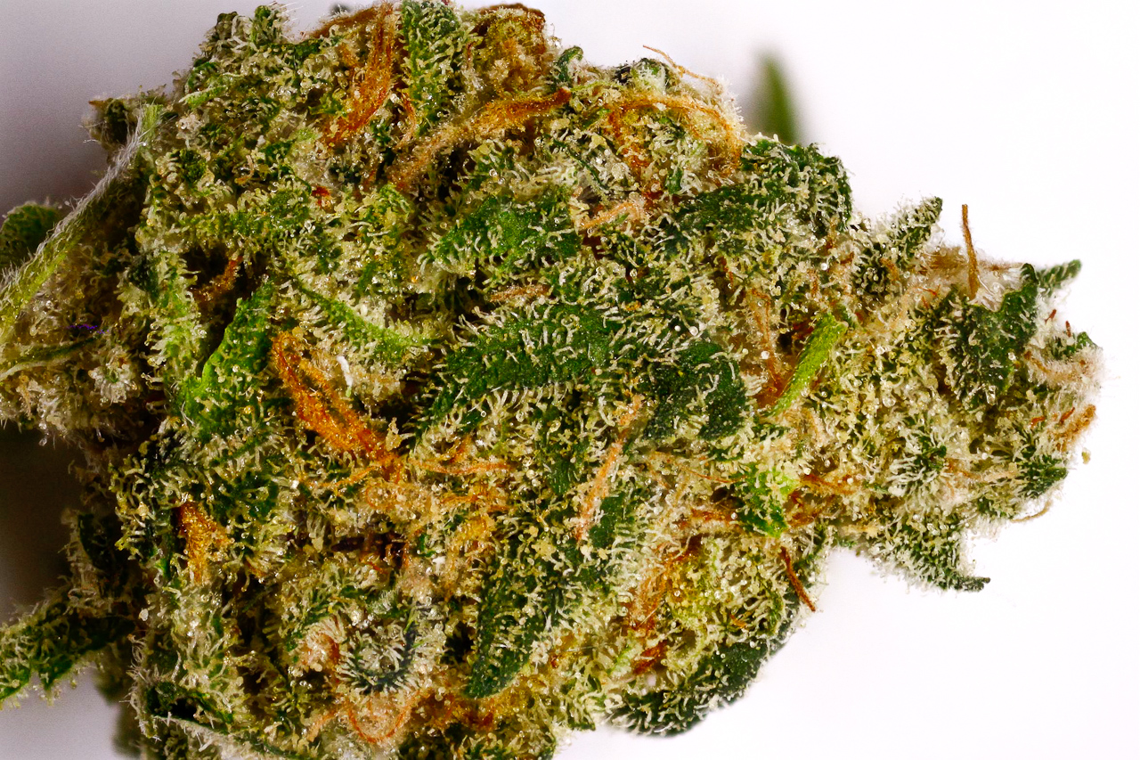 Is sending mail and orders for weed in Canada legal?